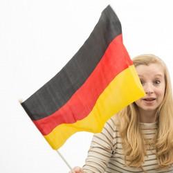 Drapeau de l'Allemagne avec Manche (46 x 30 cm)