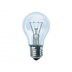 Pack de 10 ampoules Philips 40 Watts E27 (Transparent)